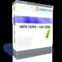 MP4 H264 AAC SDK - One Developer