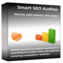 Smart SEO Auditor - 3 month subscription (license)
