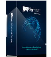 BigMIND Business Premium - Yearly