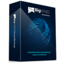 BigMIND Business Starter - Yearly