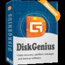 DiskGenius Standard Edition Personal License