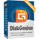DiskGenius Professional Edition Personal License