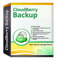 Backup-Ultimate-Edition-annual-maintenance