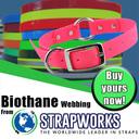 Biothane-Square