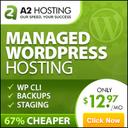A2Hosting Fast Web Hosting