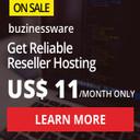 Buzinessware Web Hosting